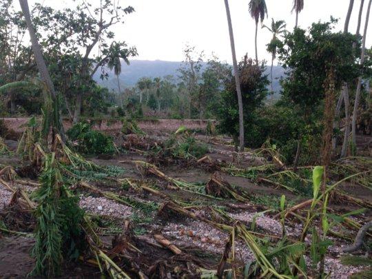 Hurricane Matthew - Recovery Effort in Haiti