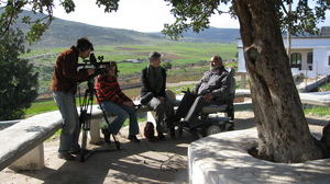 Interviews under Al Aqaba's tree, famous, mayor's office