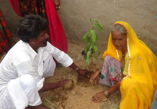 Planting A Tree! Save the Earth
