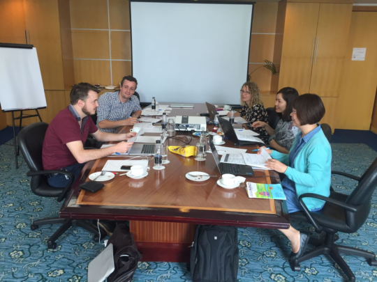 The team working on the annual work plan