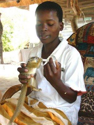 Underprivileged child feeds tree squirrel