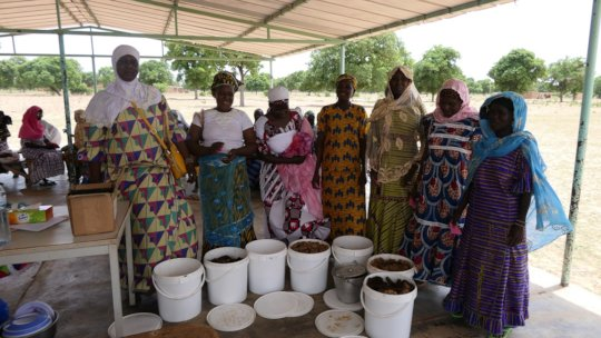 Women beekeepers from Sissa