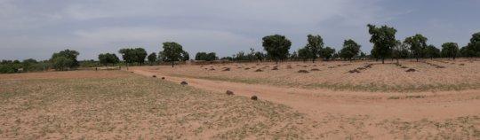 Fields before the rainy season