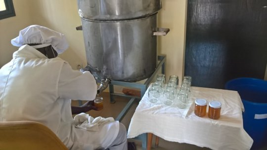 Filling glass containers with honey
