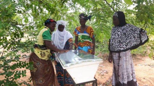 women beekeepers