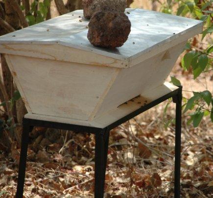 Modern or Kenyan hive