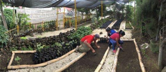 Student volunteers in the nursery