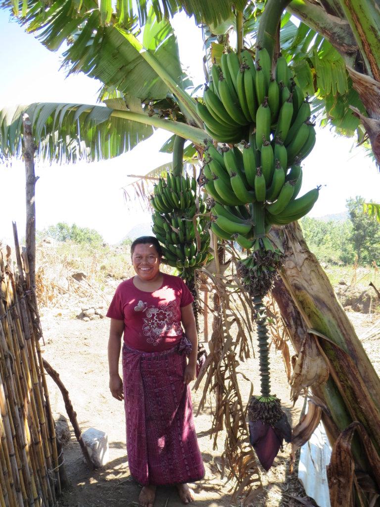 Fight Malnutrition in Rural Guatemala