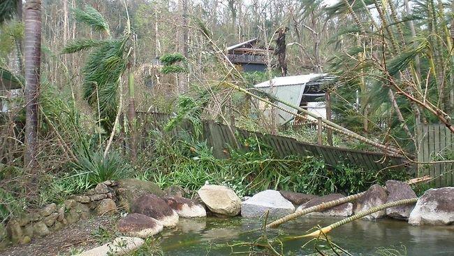 Cyclone Yasi Damage