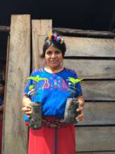 38 Women Coffee Farmers Challenge Climate Change