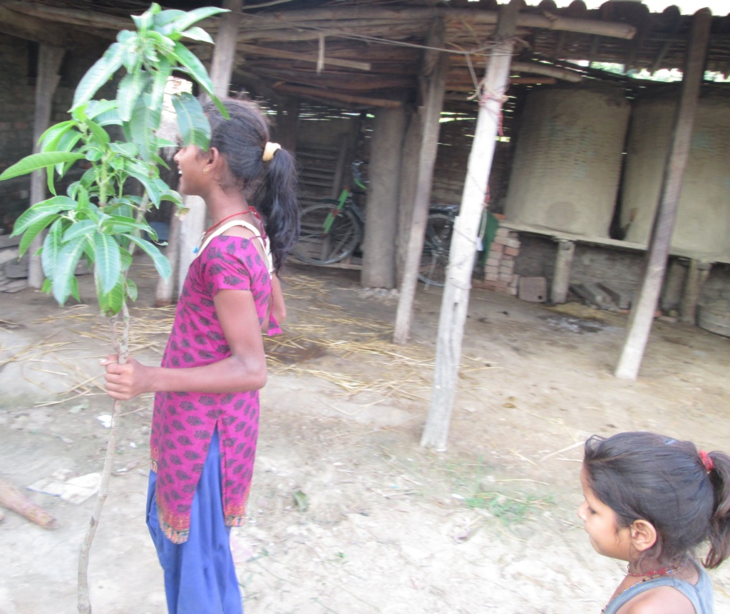 Happy school girl receiving a tree plant in gift