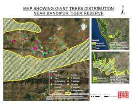 Giant trees of Bandipur-map1