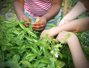 Adding Fresh Produce to the Mix!