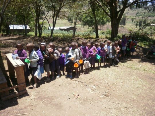 Growing Fruits for 17,500 Pupils in Gilgil Schools