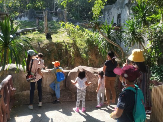Zoo outing
