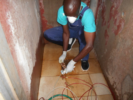 Alex rescues 2 tiny kitties from a pit latrine