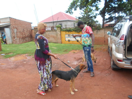 2 dogs adopted on April 14