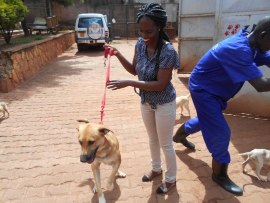 Another dog adopted on April 14