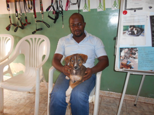 A lucky USPCA dog adopted in December