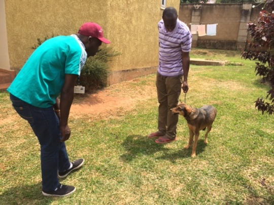 Home visit-Tuyoo and Flappy's adoptive home