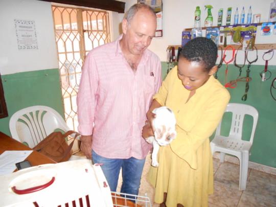 A July adoption