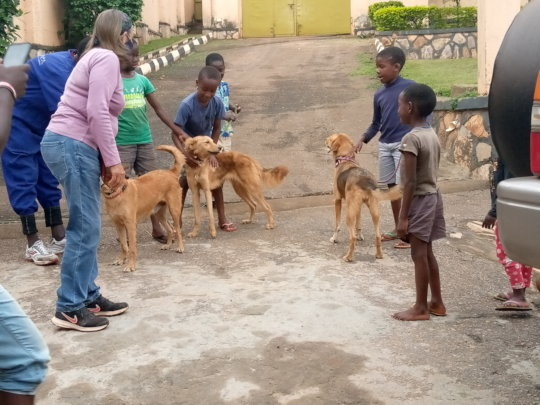 3 dogs adopted to the Human Development Center