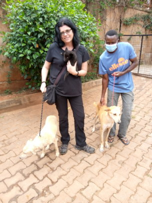 3 dogs adopted to 1 home on Sept 12