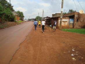 Volunteers love to walk Haven dogs
