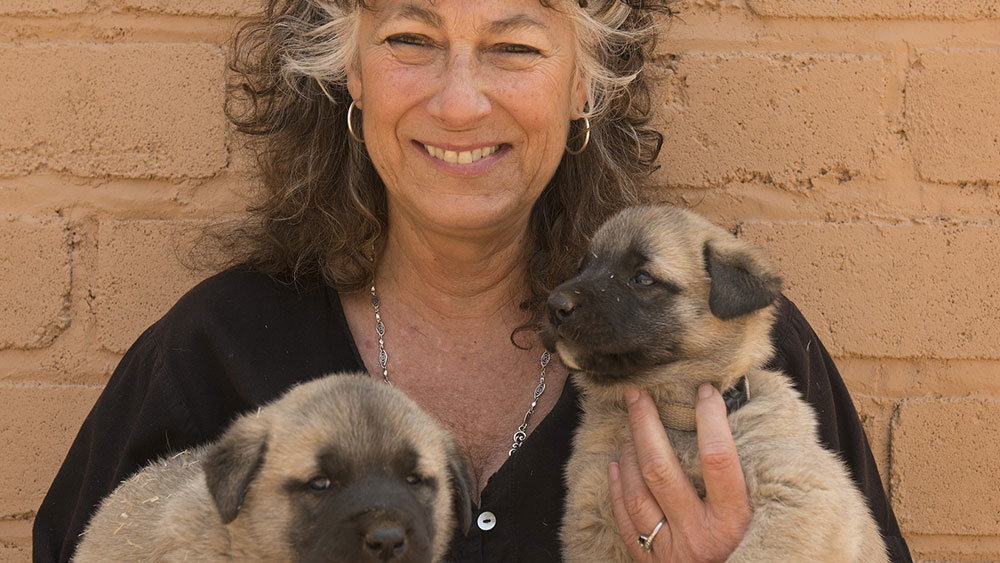Laurie Marker with Anatolian Puppies