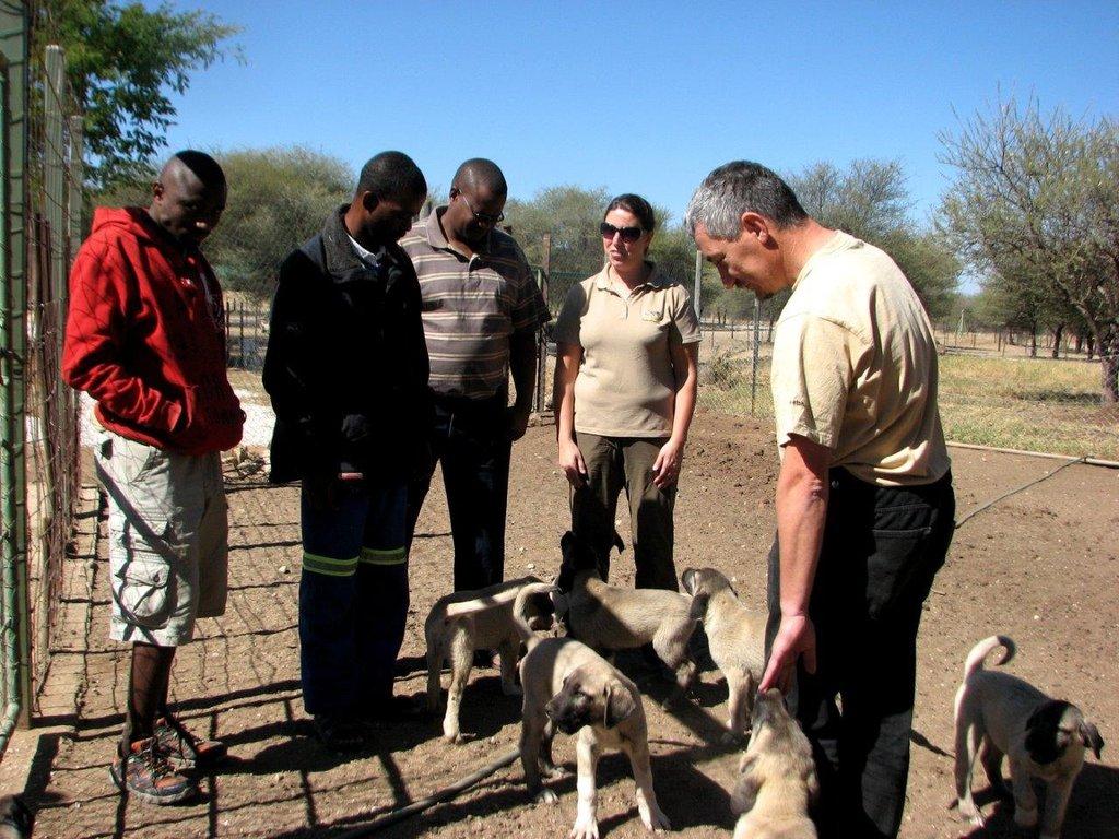 Farmers recieve their puppies