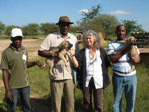 CCF's Laurie Marker presents puppy to farmer