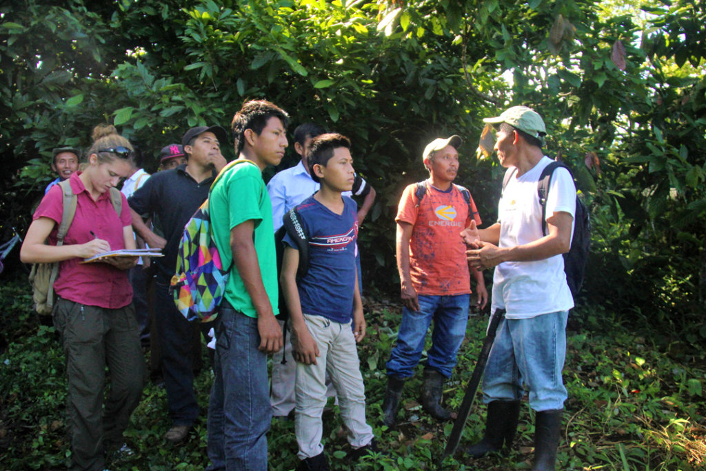 Assist Local Indigenous Farmers in Southern Belize