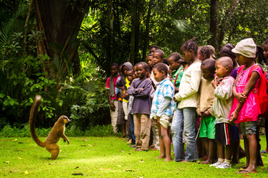 SEED Madagascar