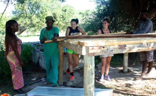 Building the platform for Martin