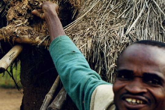 Improvement of Housing reduces Migration-Nigeria