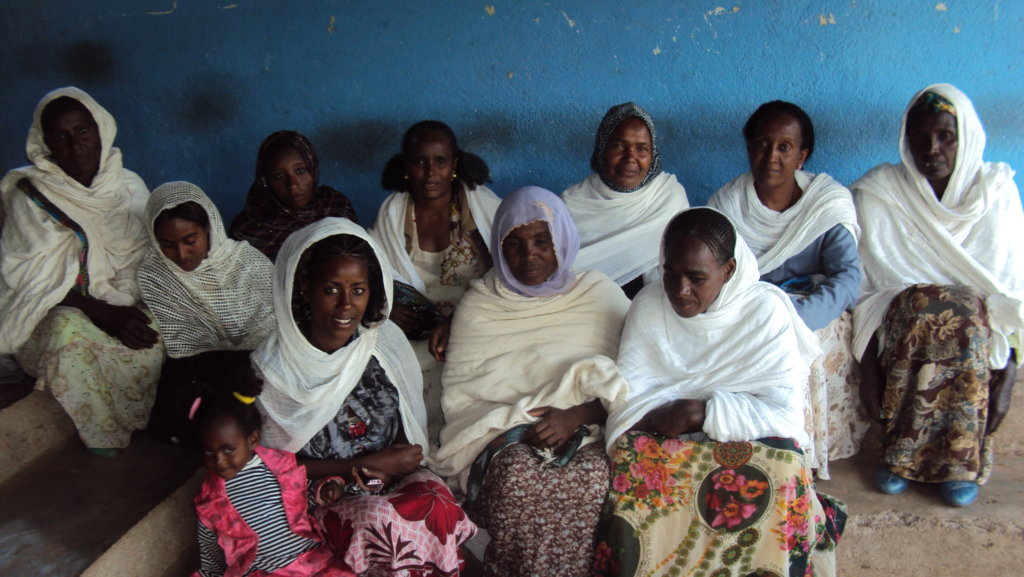 project photo for Rehabilitation of 64 Vulnerable Women in  Ethiopia