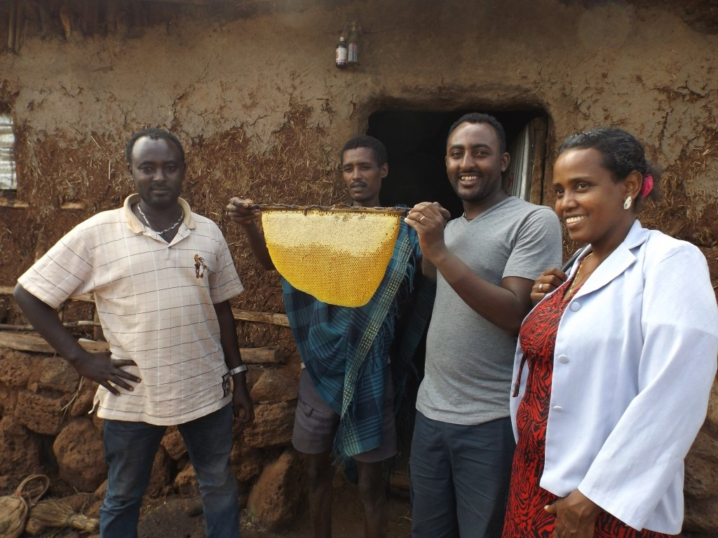 Beekeeping skills for 400 youth in Ethiopia
