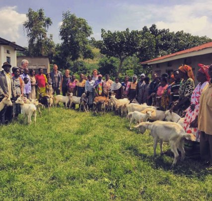We bought 41 goats from 39 families