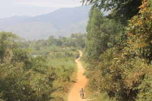 Driving in the Rwenzori Mountains