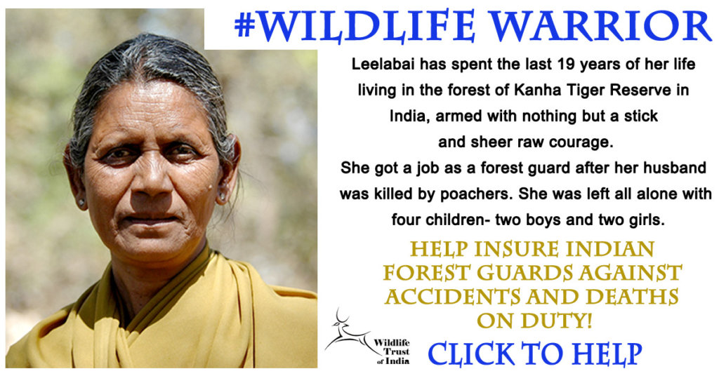 Secure the Lives of India's Guardians of the Wild