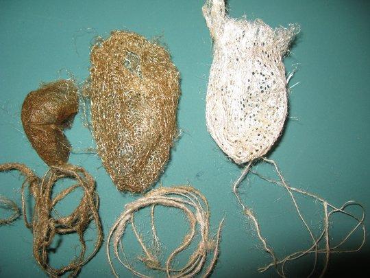 A. suraka, C. appolina, A. mitrei and silk
