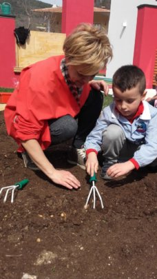 Seeding the seeds