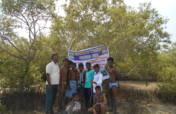 Mangroves Planting and Conservation Program