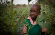 Support Child Food Security!