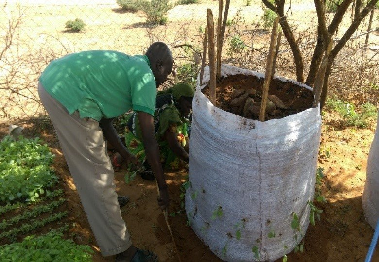 Preparing a nutrition garden in Mandera County