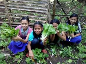 Abundant harvest via irrigation at Bunot ES
