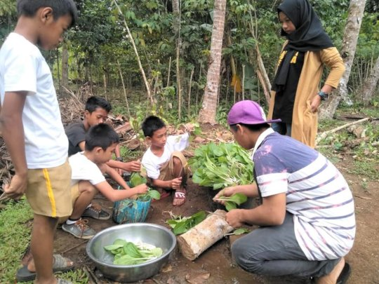 Teaching students how to harvest plants