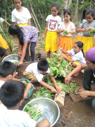 Manilop ES students gather to harvest