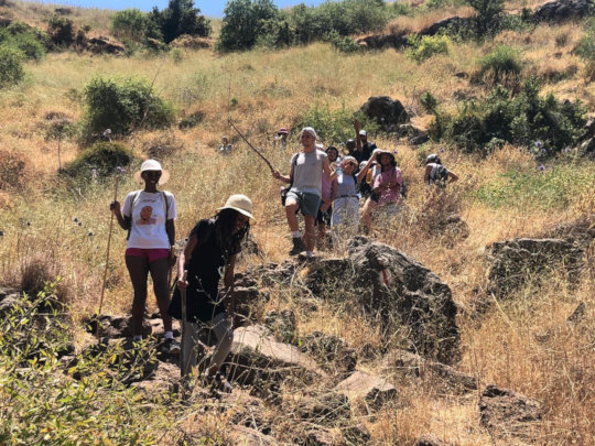 Political Tour of the Occupied Syrian Golan 3
