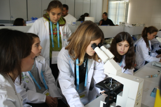 Investigating the microscopic in Madrid